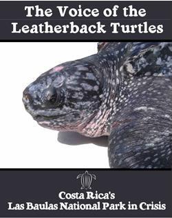 Leatherback Magazine