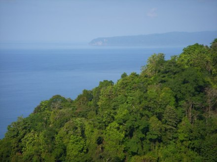 The project site: mouth of the Golfo Dulce, Southern Pacific coast, Costa Rica (Photo: Ingrid Rojas)